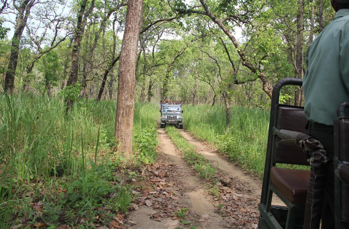 Jeep safari in Chitwan National Park